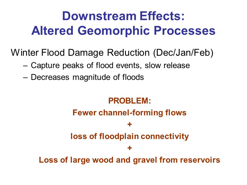 Downstream Effects: Altered Geomorphic Processes