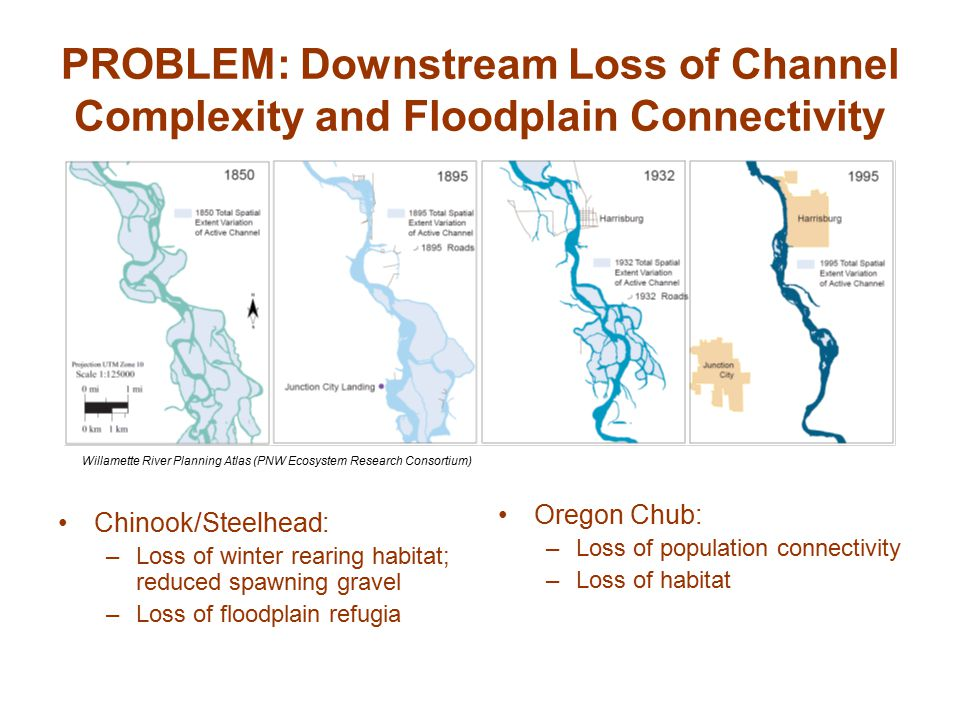 PROBLEM: Downstream Loss of Channel Complexity and Floodplain Connectivity