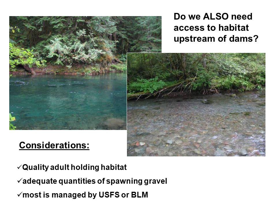 Do we ALSO need access to habitat upstream of dams