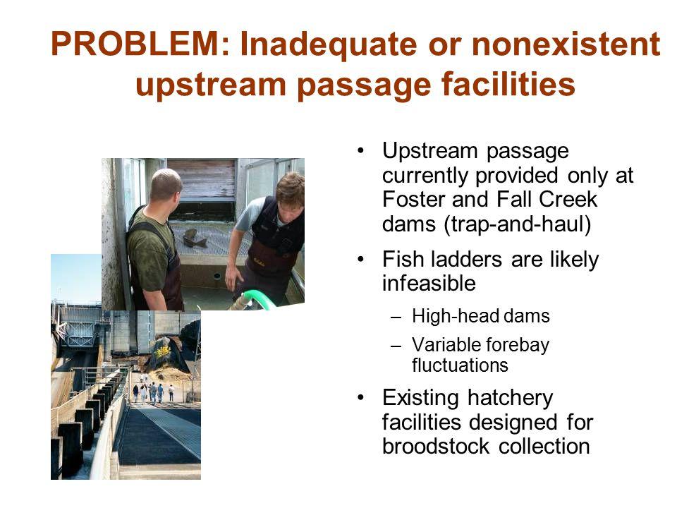 PROBLEM: Inadequate or nonexistent upstream passage facilities