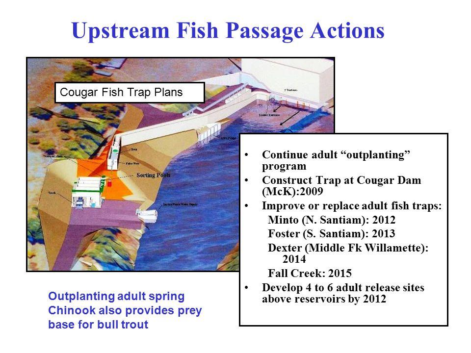 Upstream Fish Passage Actions