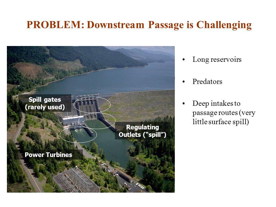 PROBLEM: Downstream Passage is Challenging