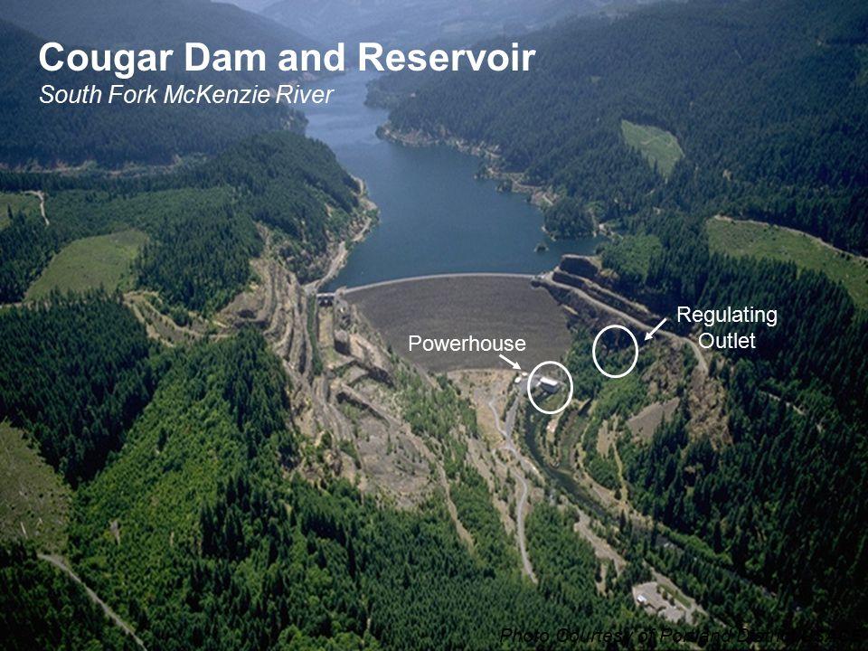 Cougar Dam and Reservoir