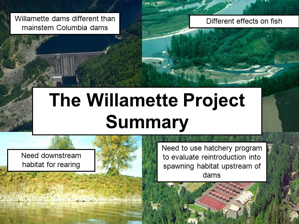 The Willamette Project Summary