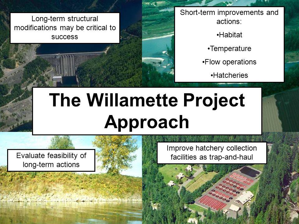 The Willamette Project Approach