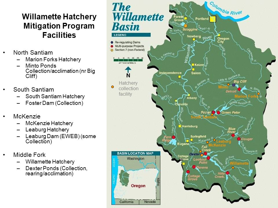 Willamette Hatchery Mitigation Program Facilities