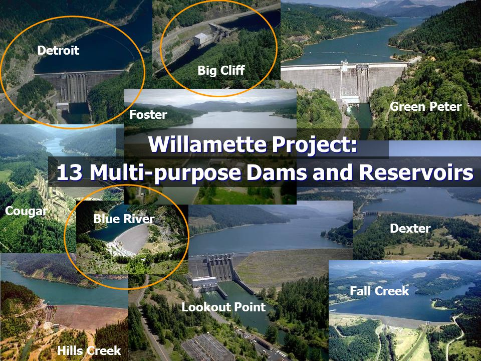 13 Multi-purpose Dams and Reservoirs
