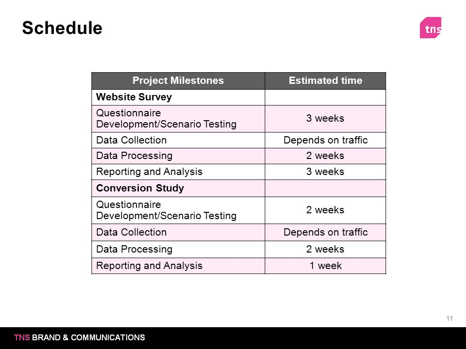 Schedule Project Milestones Estimated time Website Survey