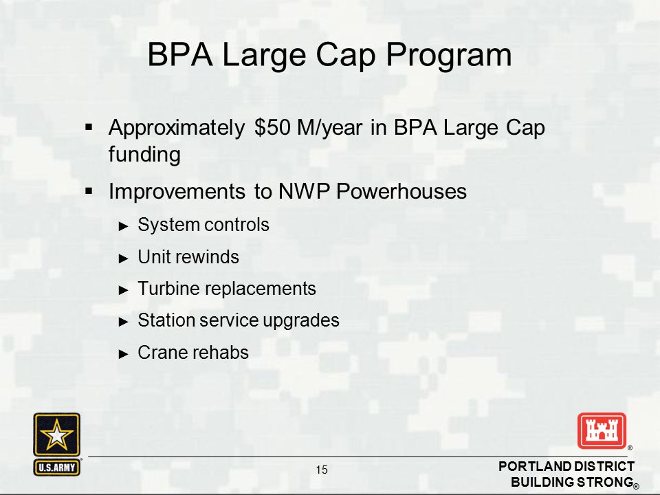 BPA Large Cap Program Approximately $50 M/year in BPA Large Cap funding. Improvements to NWP Powerhouses.