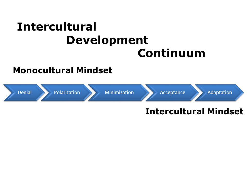 Intercultural Development Continuum