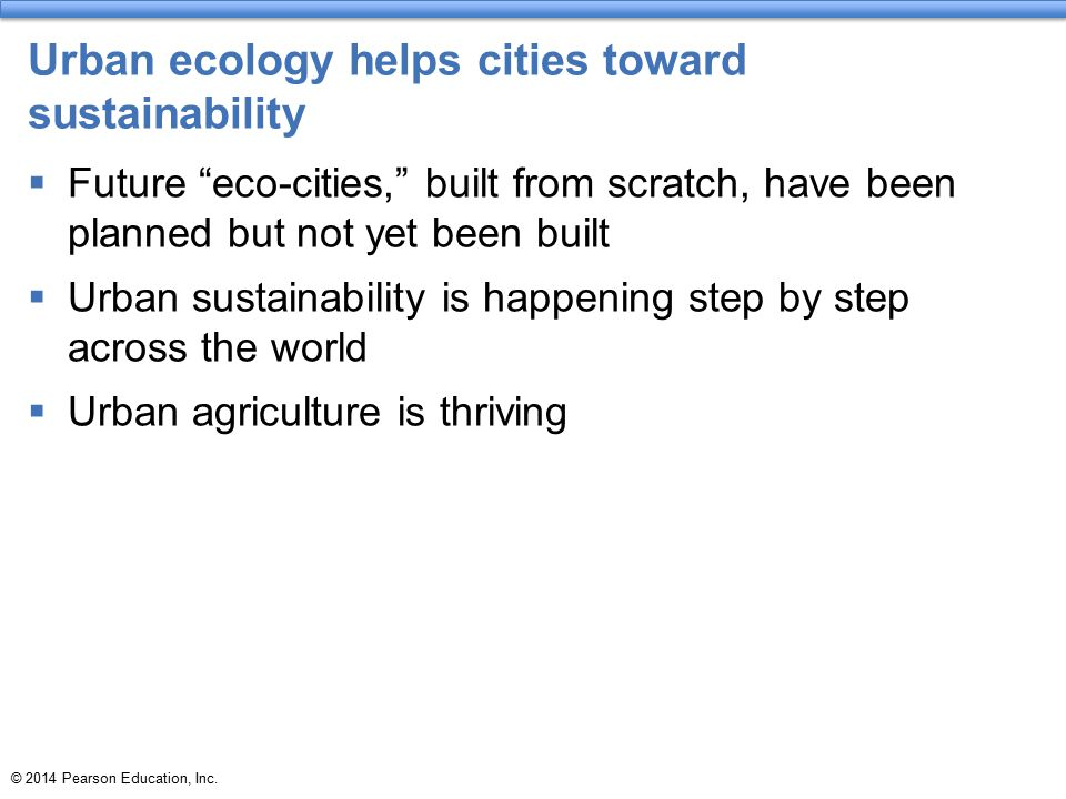 Urban ecology helps cities toward sustainability