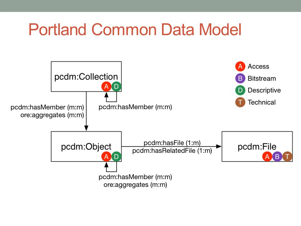 Portland Common Data Model