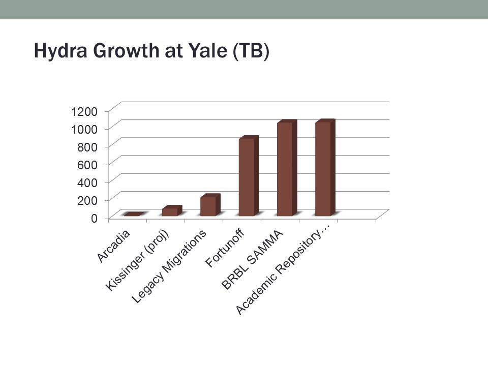 Hydra Growth at Yale (TB)