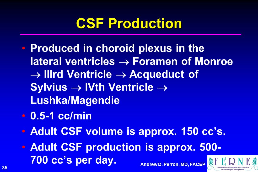 CSF Production