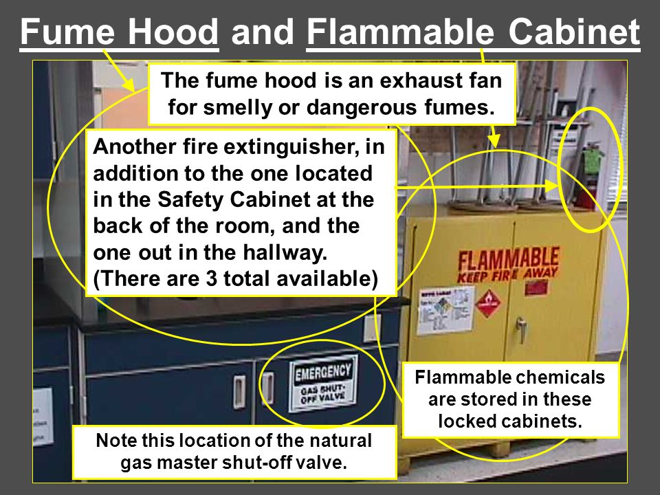 Fume Hood and Flammable Cabinet