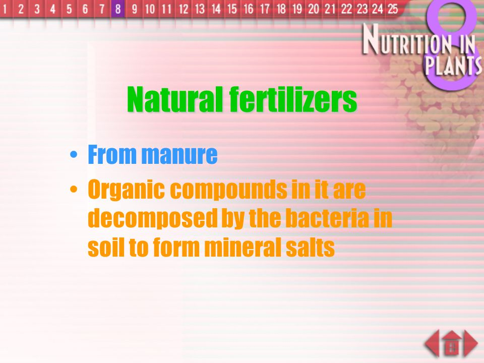 Natural fertilizers From manure