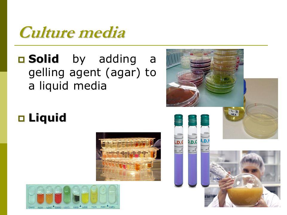 Culture media Solid by adding a gelling agent (agar) to a liquid media