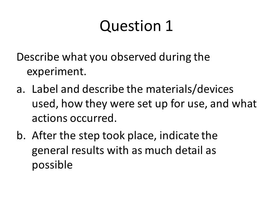 Question 1 Describe what you observed during the experiment.