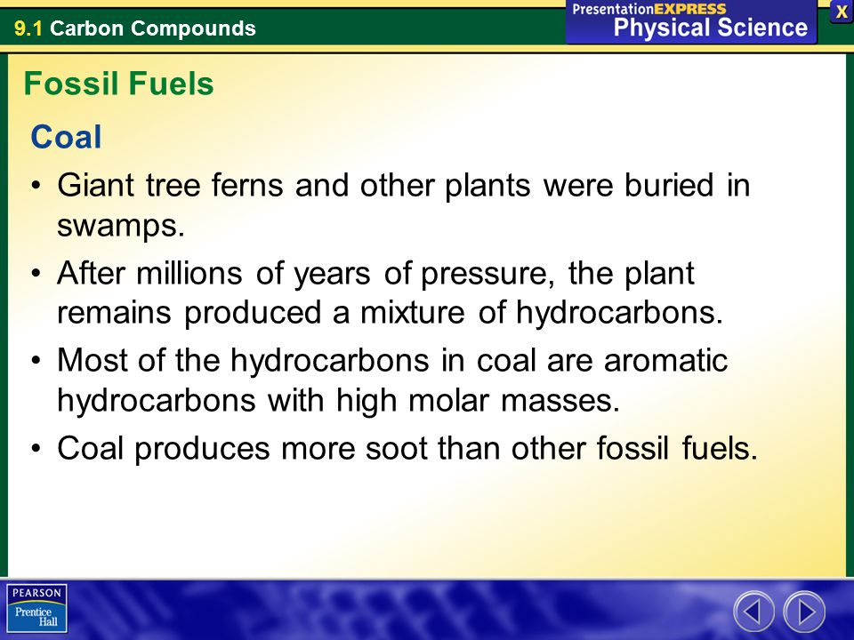 Fossil Fuels Coal. Giant tree ferns and other plants were buried in swamps.