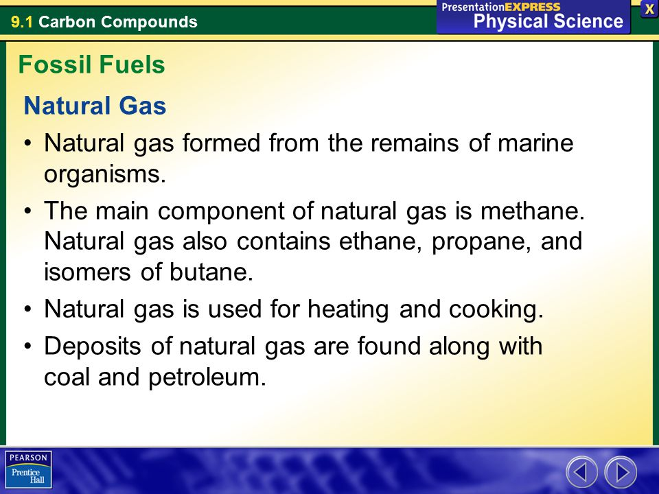 Fossil Fuels Natural Gas. Natural gas formed from the remains of marine organisms.