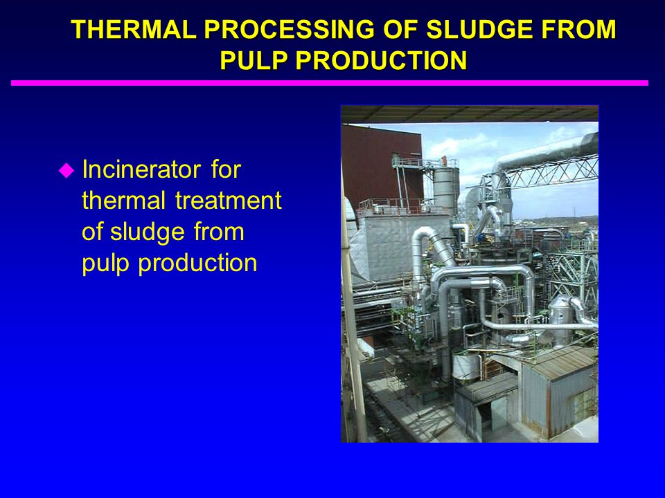 THERMAL PROCESSING OF SLUDGE FROM PULP PRODUCTION