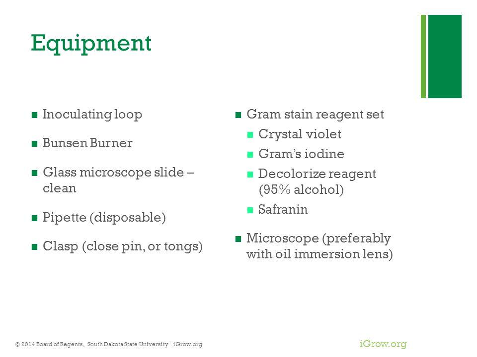 Equipment Inoculating loop Bunsen Burner