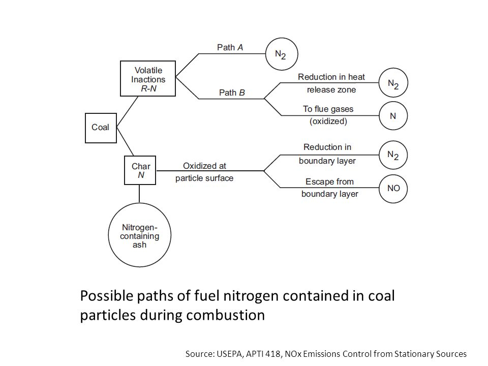 Possible paths of fuel nitrogen contained in coal particles during combustion