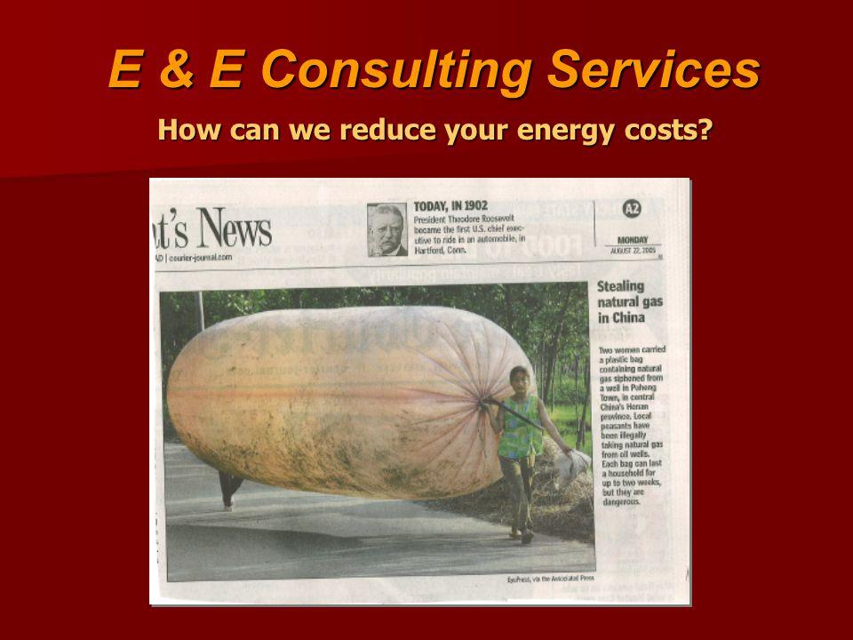 E & E Consulting Services