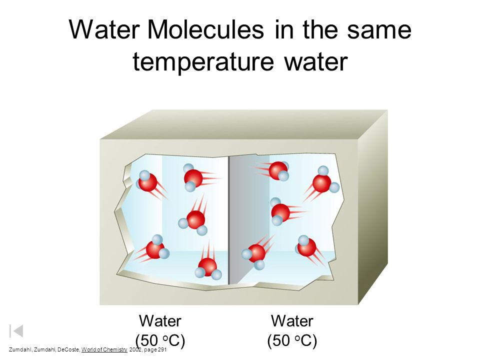 Water Molecules in the same temperature water