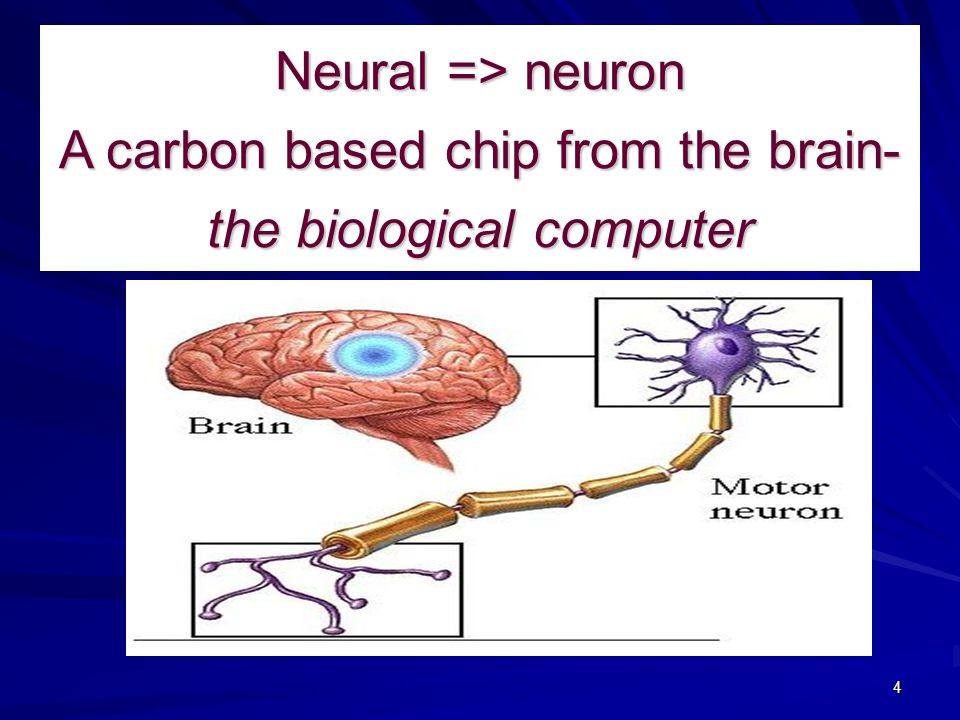 Neural => neuron A carbon based chip from the brain- the biological computer