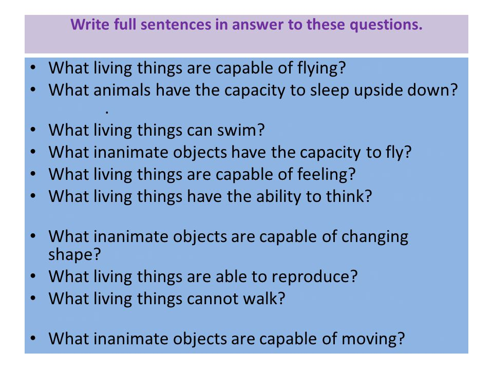 Write full sentences in answer to these questions.