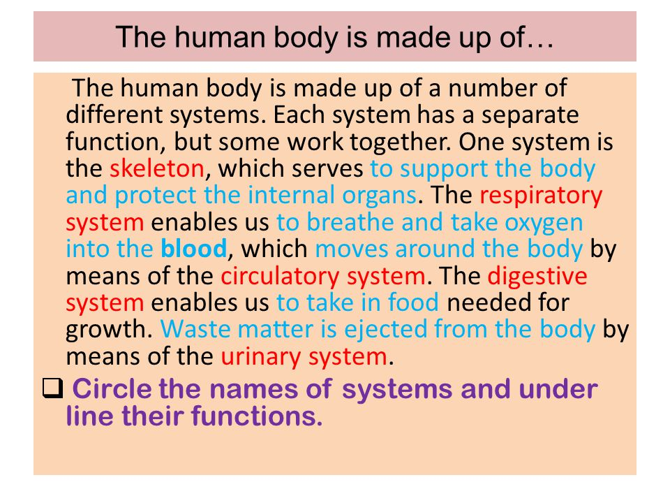 The human body is made up of…