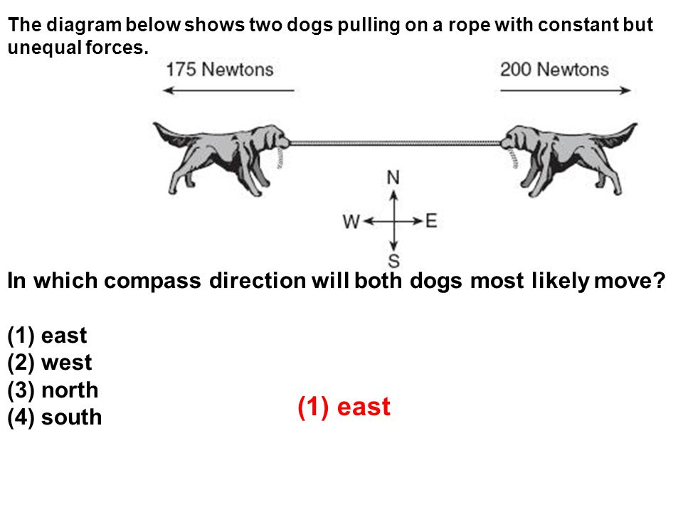 The diagram below shows two dogs pulling on a rope with constant but unequal forces.