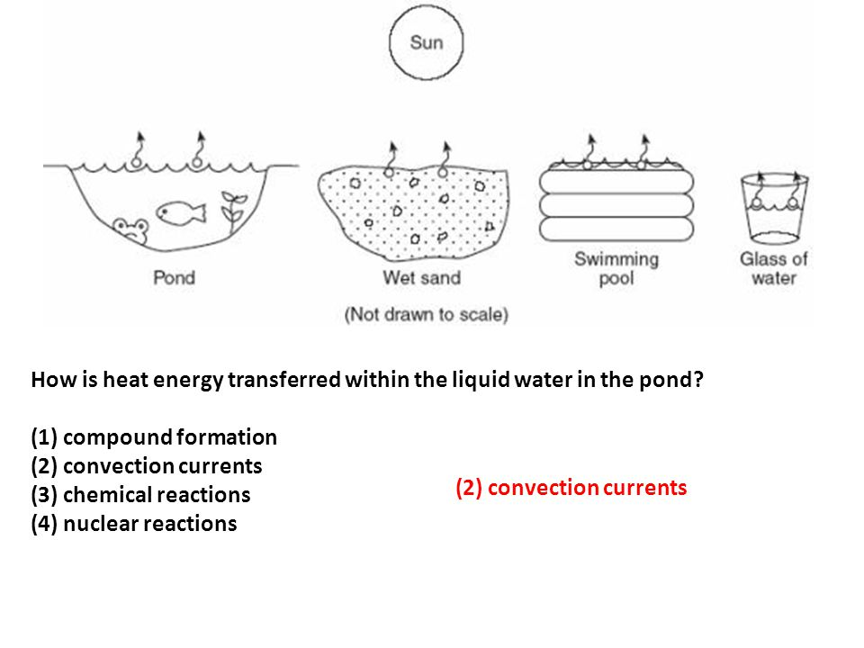 How is heat energy transferred within the liquid water in the pond