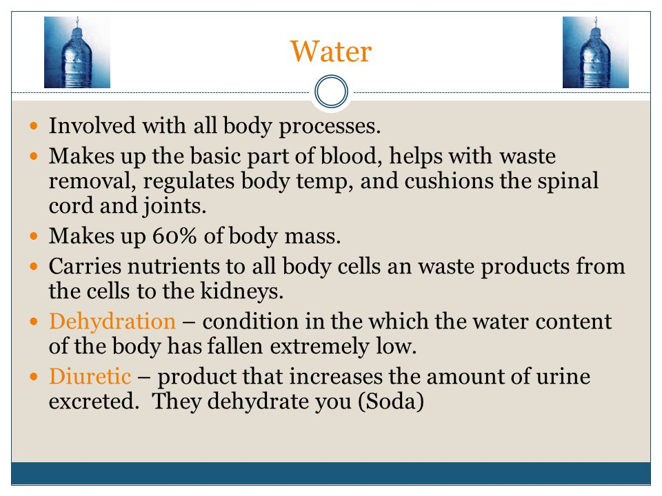 Water Involved with all body processes.