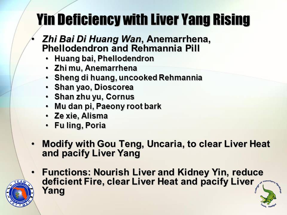 Yin Deficiency with Liver Yang Rising