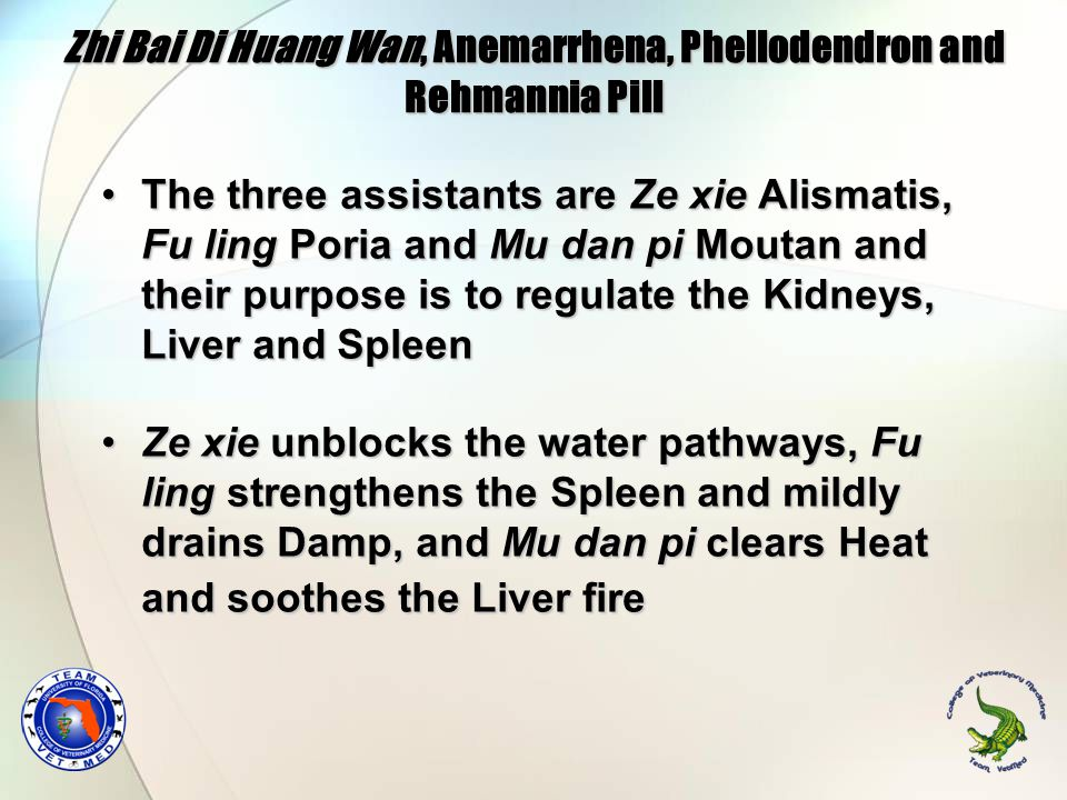 Zhi Bai Di Huang Wan, Anemarrhena, Phellodendron and Rehmannia Pill