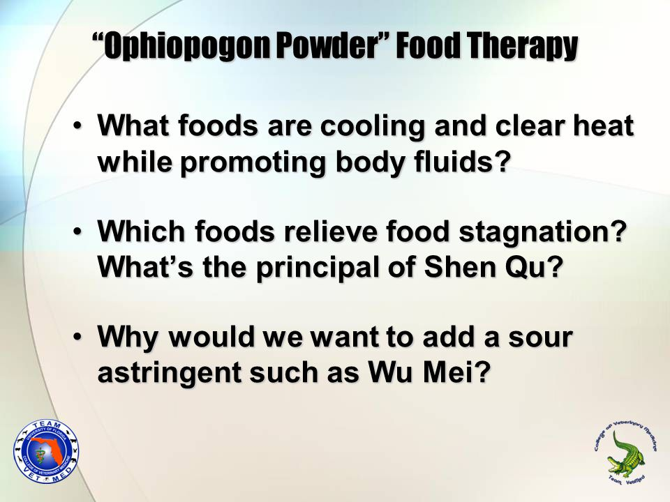 Ophiopogon Powder Food Therapy