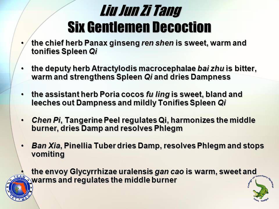 Liu Jun Zi Tang Six Gentlemen Decoction
