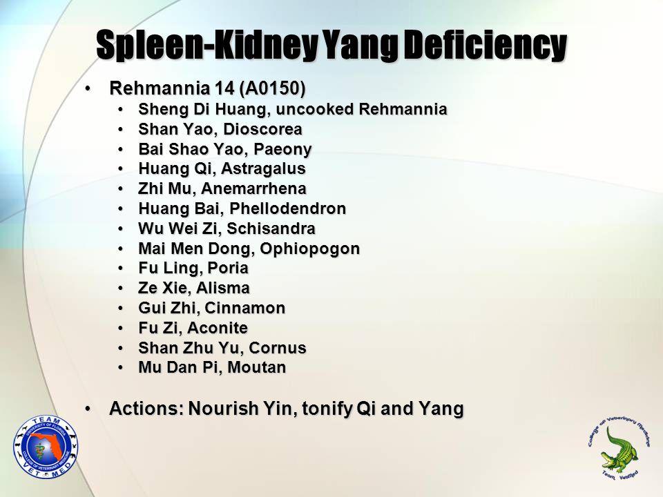 Spleen-Kidney Yang Deficiency