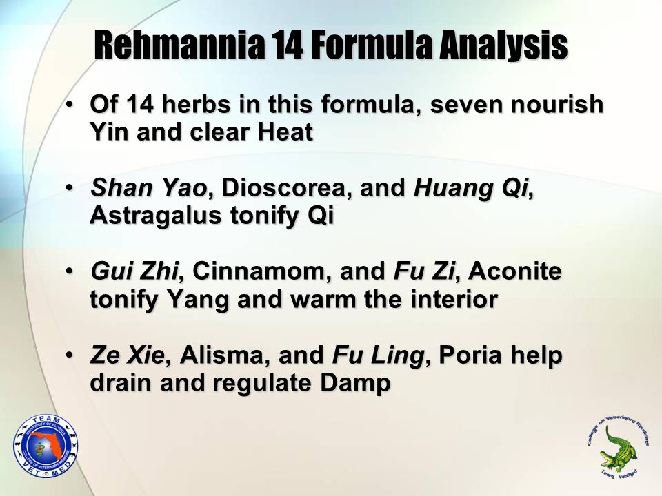 Rehmannia 14 Formula Analysis