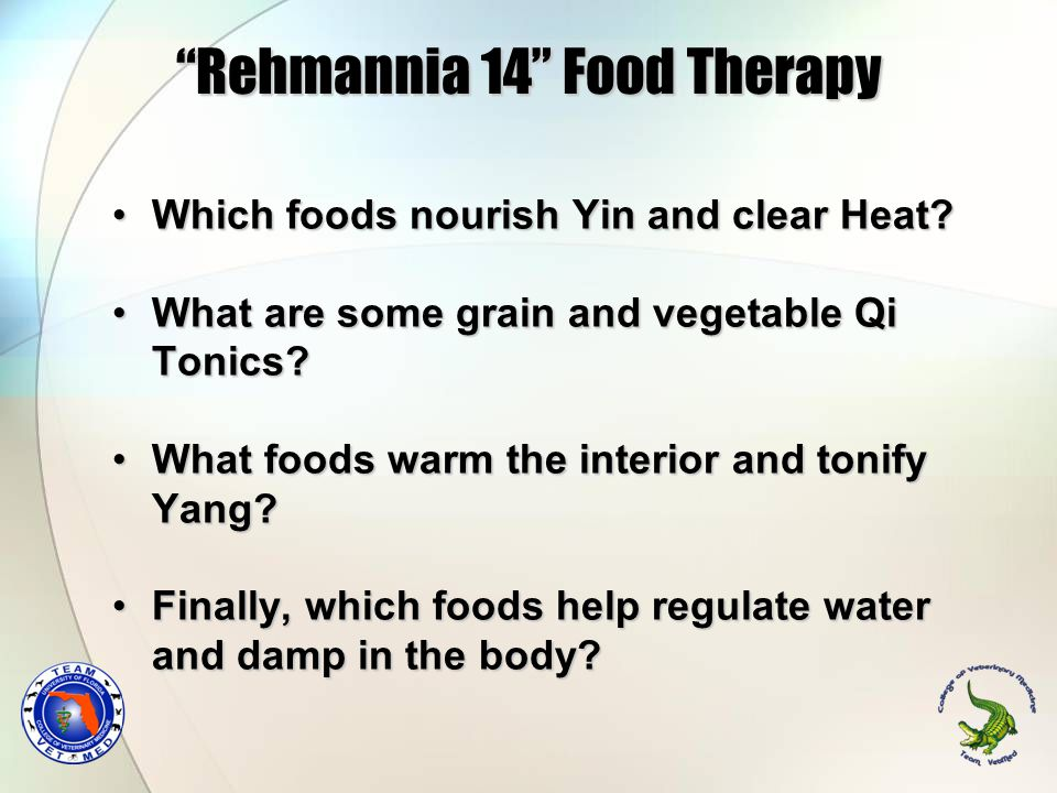 Rehmannia 14 Food Therapy