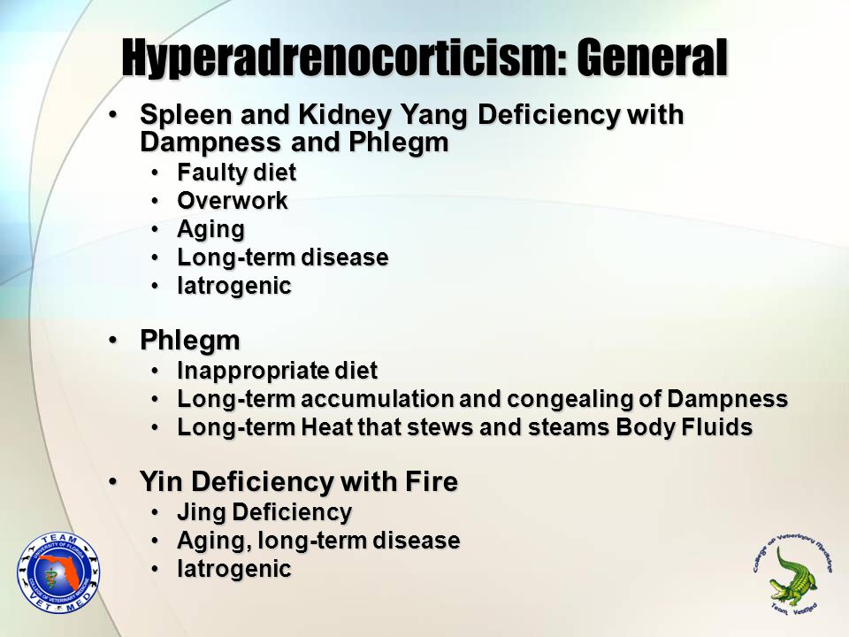 Hyperadrenocorticism: General