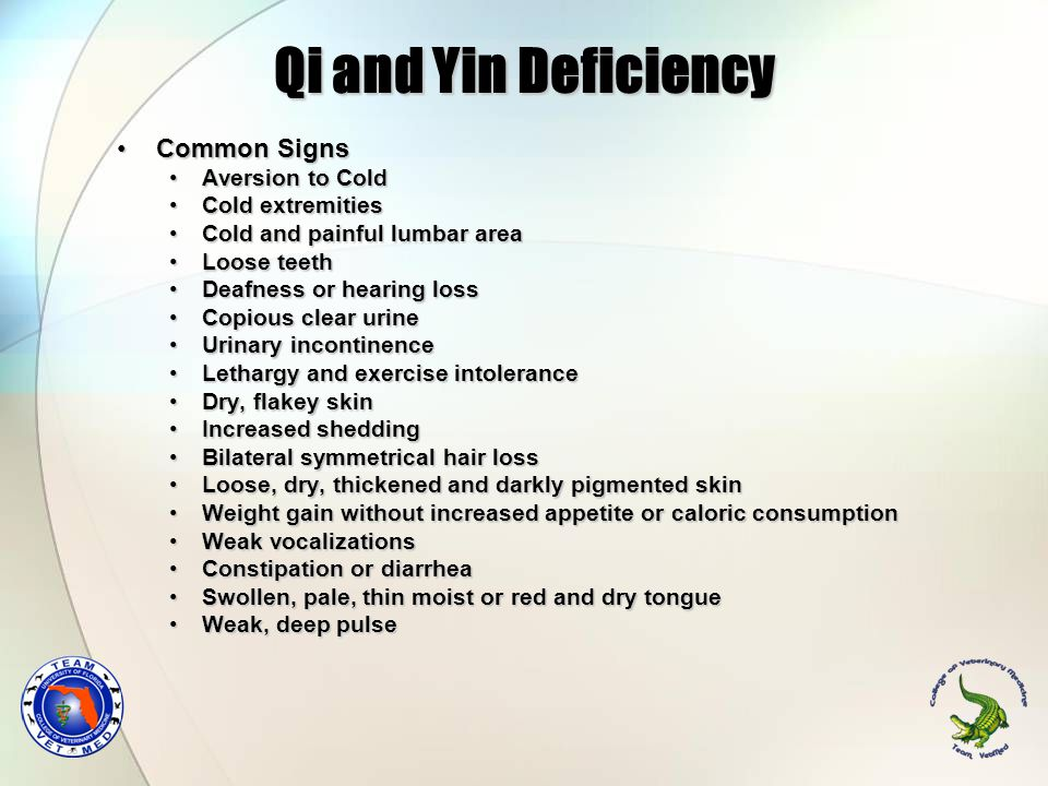 Qi and Yin Deficiency Common Signs Aversion to Cold Cold extremities