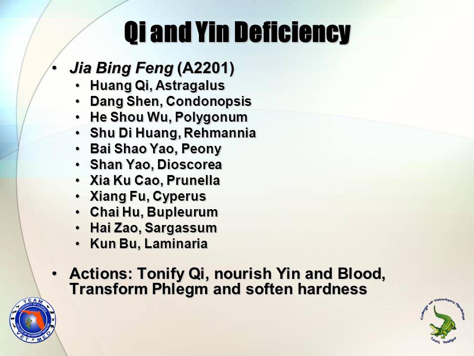 Qi and Yin Deficiency Jia Bing Feng (A2201)