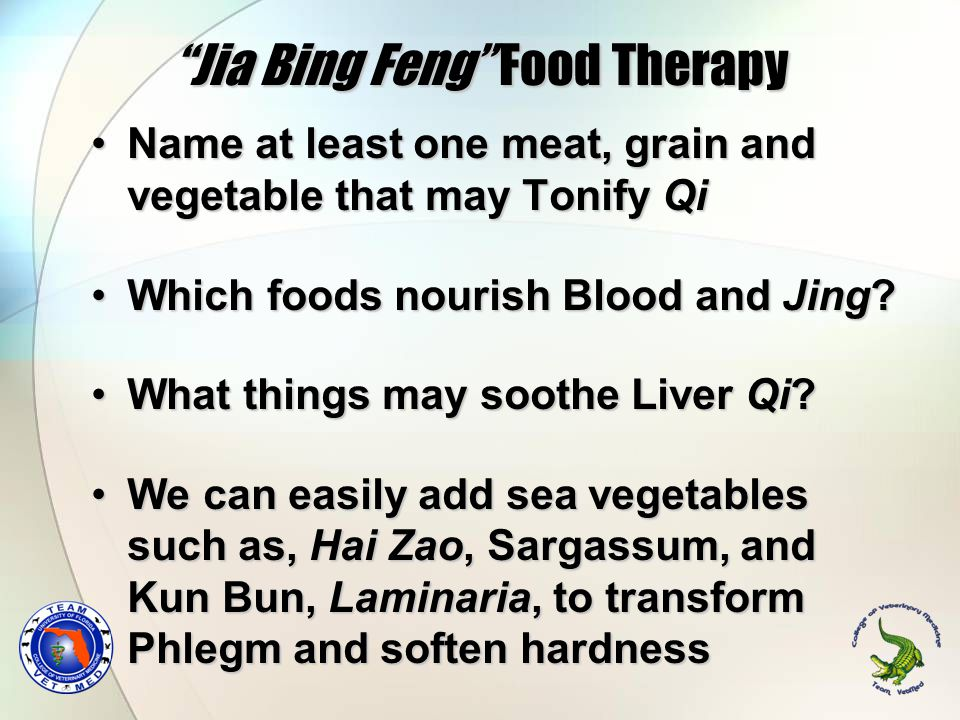 Jia Bing Feng Food Therapy