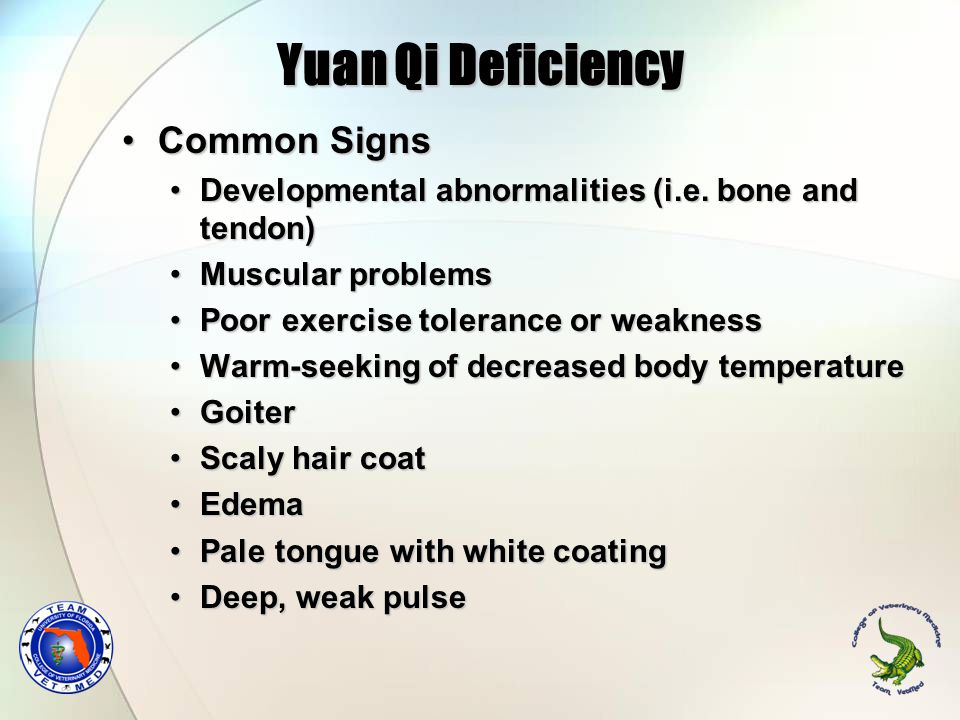 Yuan Qi Deficiency Common Signs