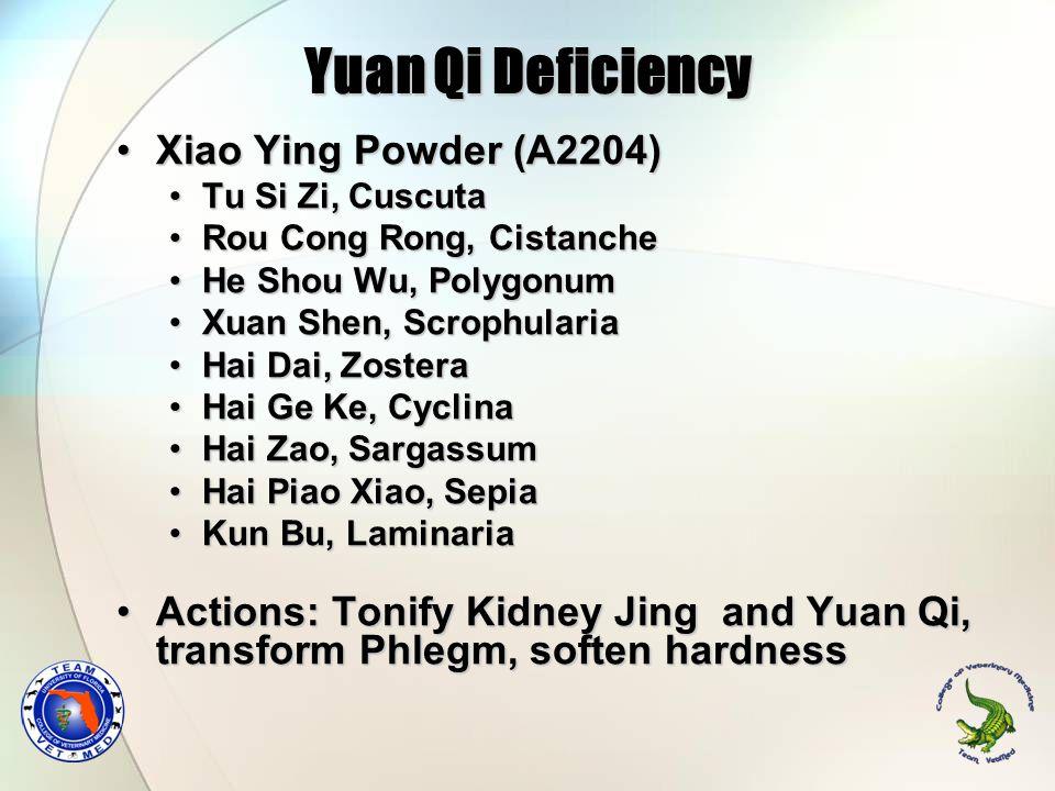 Yuan Qi Deficiency Xiao Ying Powder (A2204)