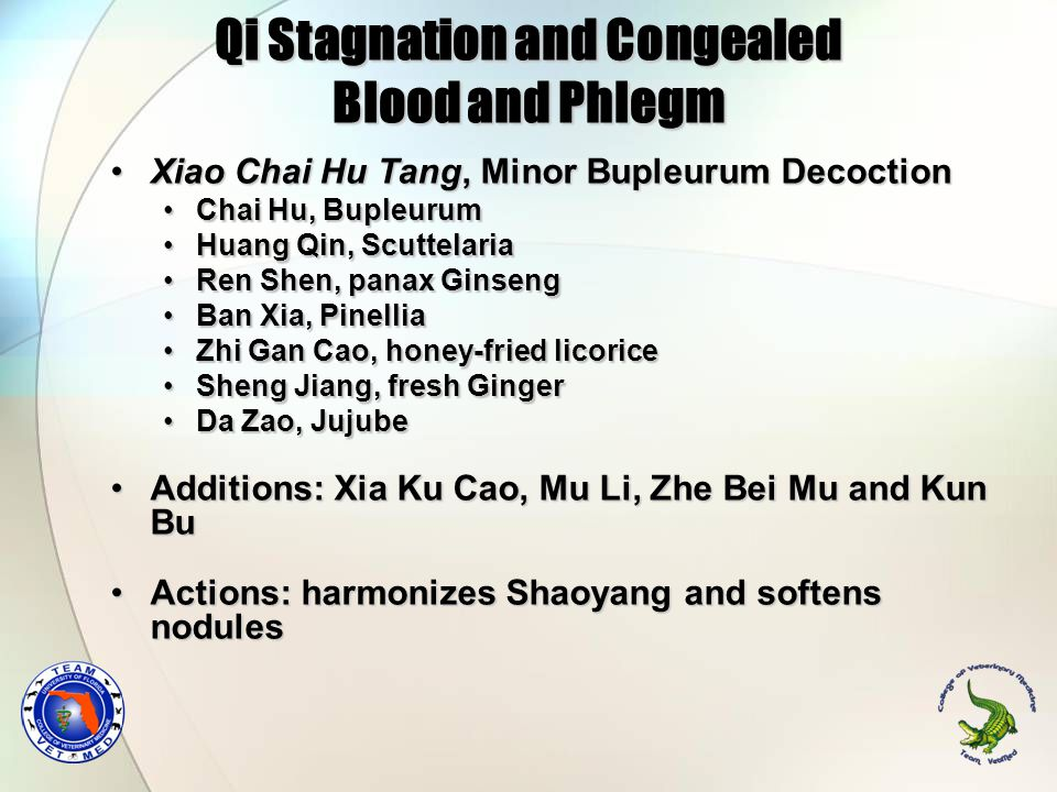 Qi Stagnation and Congealed Blood and Phlegm