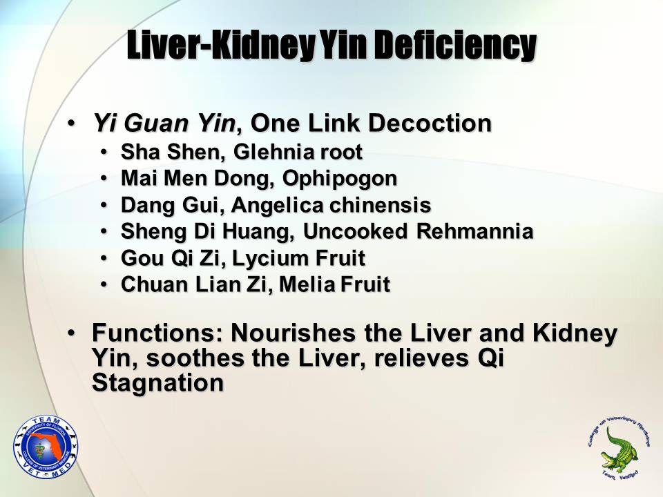 Liver-Kidney Yin Deficiency